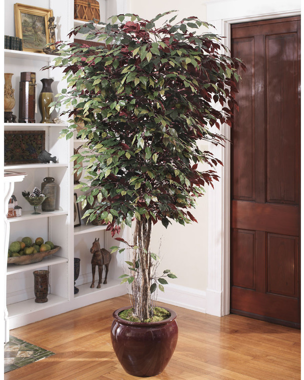 Deluxe Silk Capensia Tree - 7ft