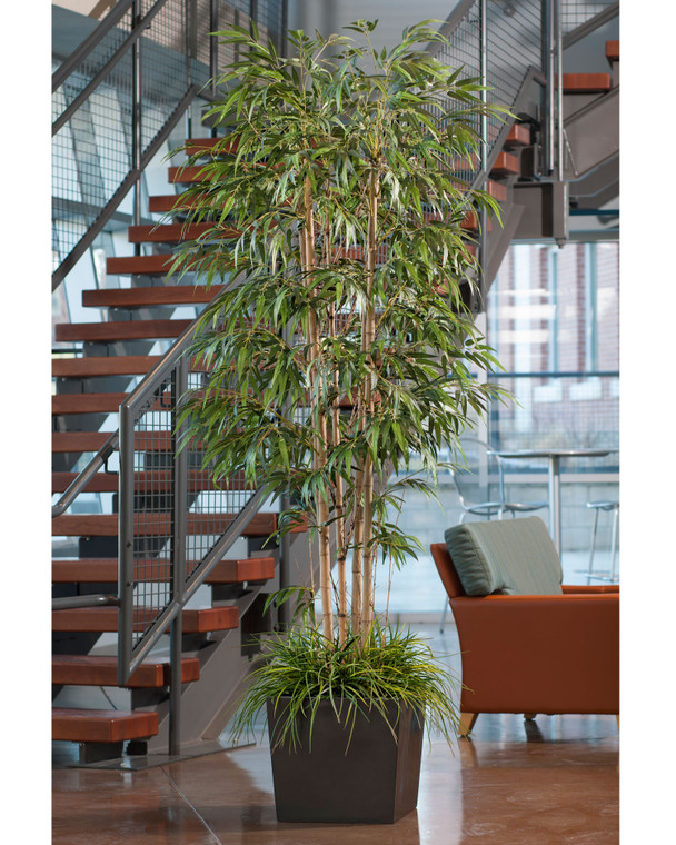 six foot deluxe silk bamboo tree in cubico container