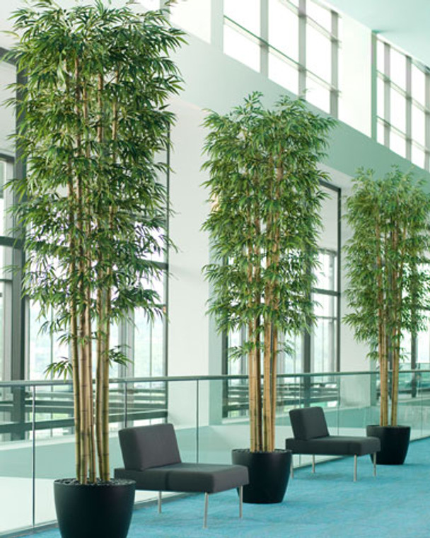 Tall Deluxe Bamboo Tree - 10ft