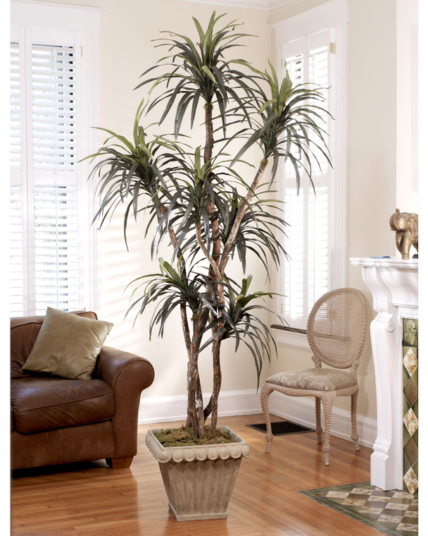 Unique 7' dracaena silk tree with natural wood trunk