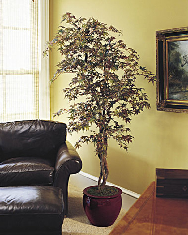 Realistic 7' japanese maple silk tree with authentic wood trunk