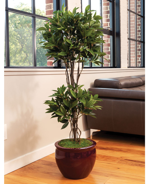 Olive Double Topiary Silk Tree
