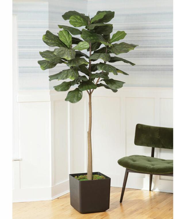 7' Faux Big Leaf Fiddle Fig Tree