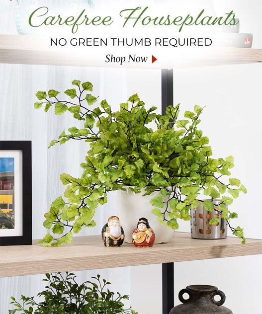 Carefree Silk, Artificial Houseplants available at Petals.