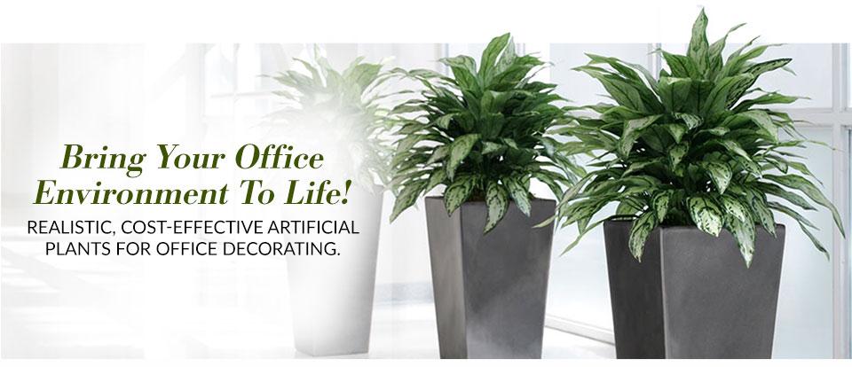 office-dcorate-one.jpg