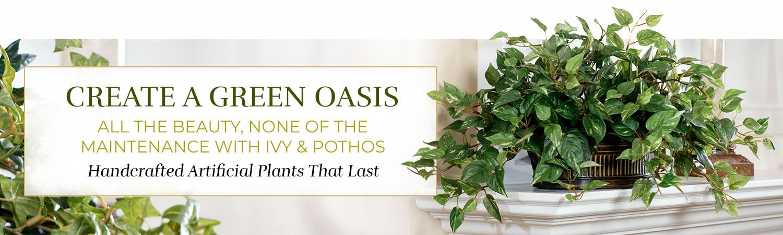 Silk Ivy & Pothos Plants