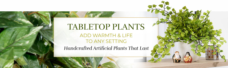 Silk & Artificial Table, Shelf Plants