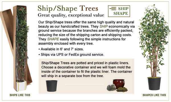 Ship-Shape Trees - great quality, exceptional value