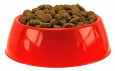 Dispelling the Mystery in Reading Dog Food Ingredient Labels