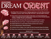 Quilters Dream Cotton -  Orient Blend (Queen)