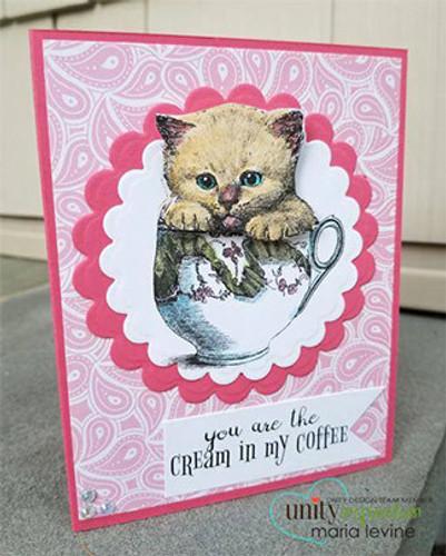 Sweet Tea Kitty