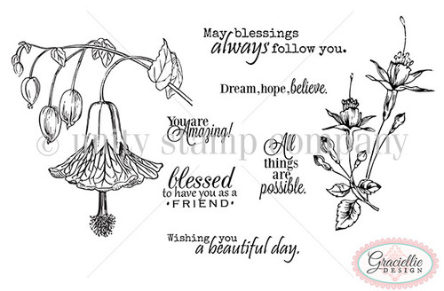 May Blessings Follow You