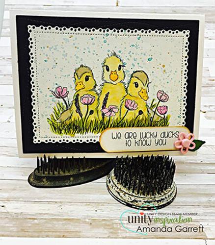 Lucky Little Ducks