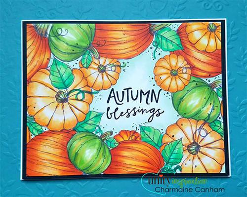 Pumpkin Patch {border backgrounds}
