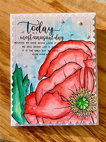 Unusual Day Poppy