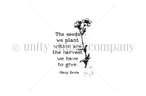 Seeds Within