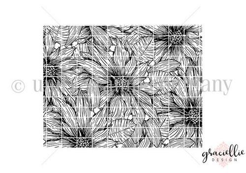 Wild Poinsettia Background