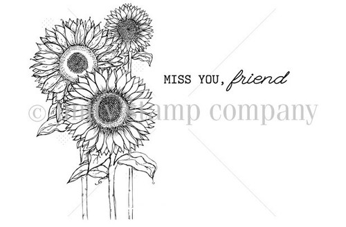 Sunflower-Miss you, Friend
