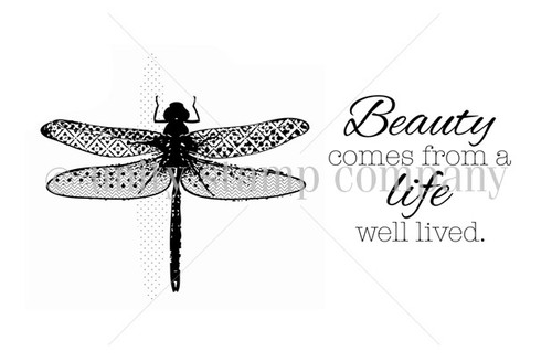 Dragon Fly of Beauty