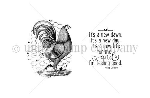 New Day Rooster