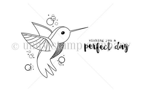 Perfect Day Hummingbird