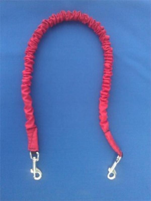 K9 Cruiser leash