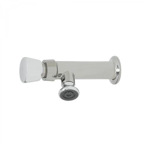 T&S Brass B-0800 Slow Self-Closing Faucet heavy duty push button external adjustment