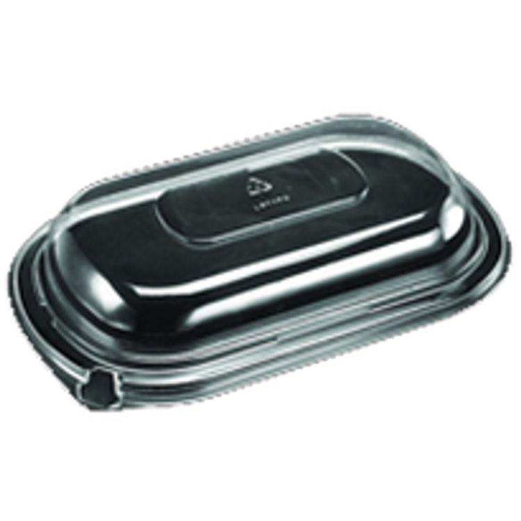 Dinex Disposable Container