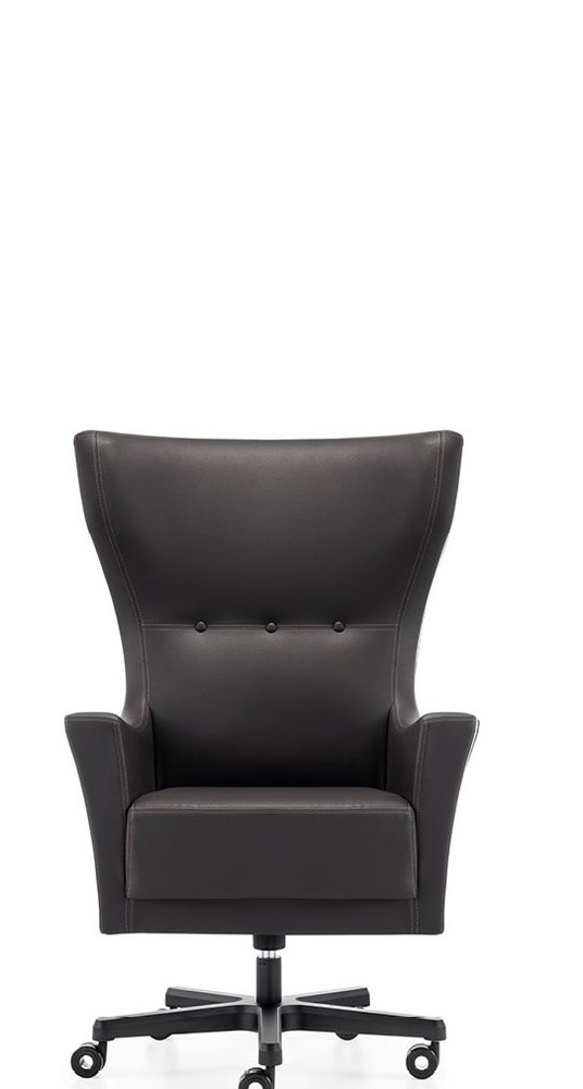 Eggor Executive Office Chair by Seating Mind