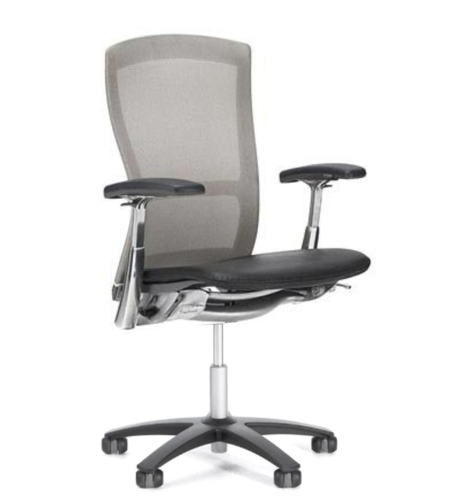 Life Chair By Knoll Gray Mesh Back Black Leather Seat + Fully Adjustable Model