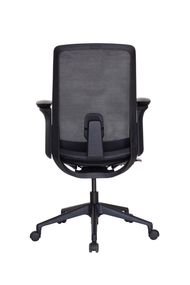 Lifetime Chair By SeatingMind Executive Model