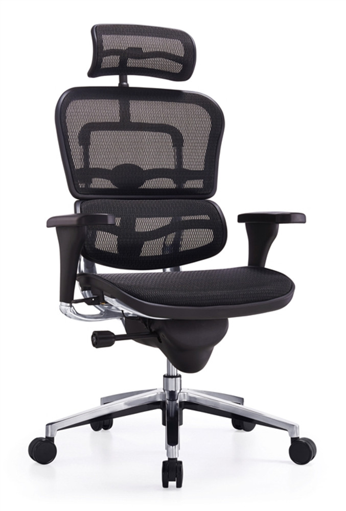 Ergospine Task Chair in Black Mesh Seat and Back by Lemoderno