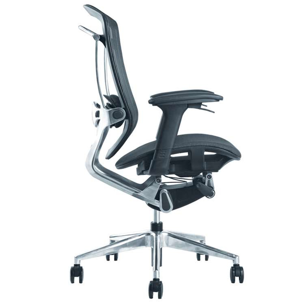 Ergo Fit Highly Adjustable Mesh Office Chair, Black by Fine Mod