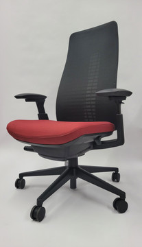 Haworth Fern Chair Fully Adjustable Model 4-D Arms - Lumbar Support