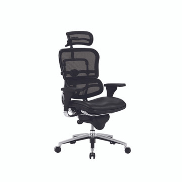 Lemoderno Ergospine Task Chair in Black Mesh Back and Leather Seat