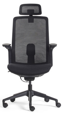 Lifetime Chair With Headrest By SeatingMind Executive Model