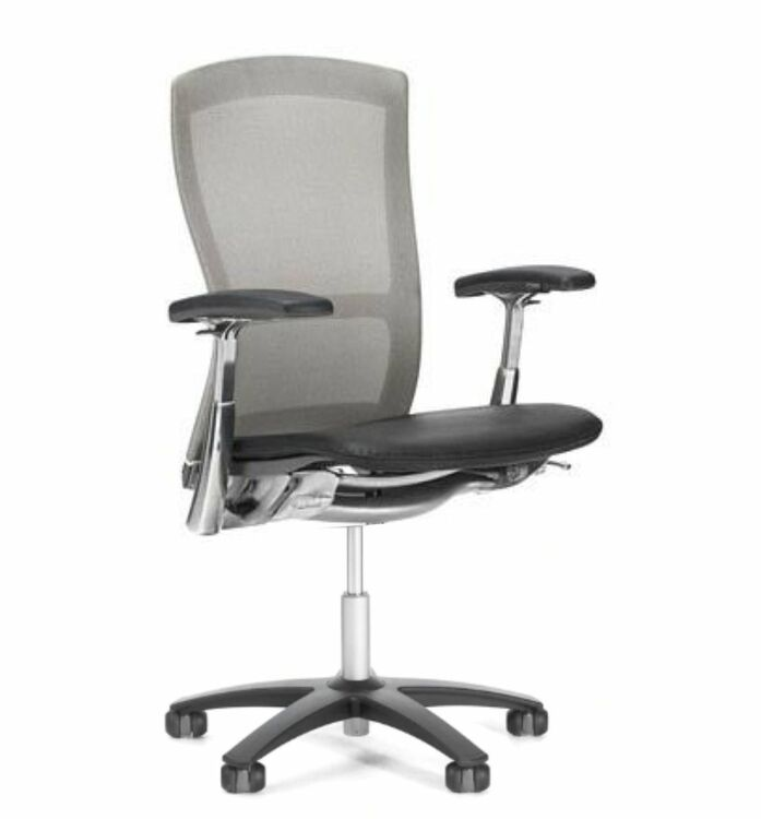 Knoll Life Chair Gray Mesh Back Black Leather Seat + Fully Adjustable Model