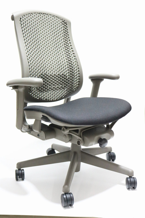 Herman Miller Celle Chair Black Seat + Adjustable Lumbar
