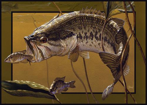 Bass Area Rug