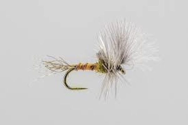 BWO Cripple Fishing Flies