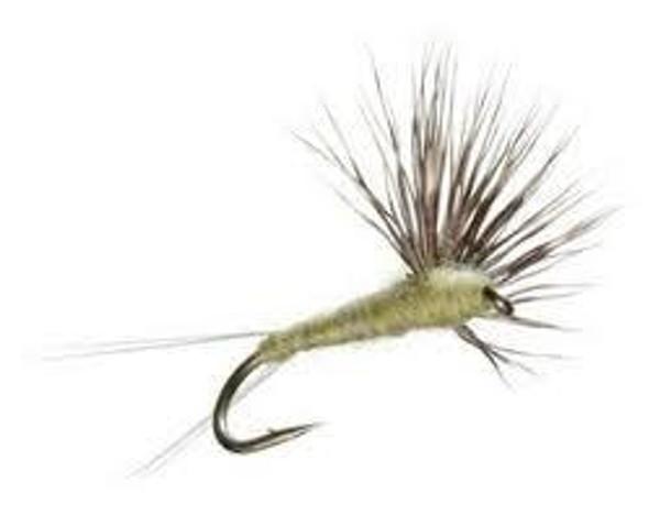Compara Dun BWO Fishing Flies