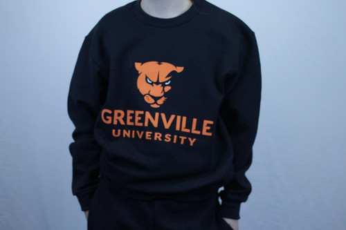 Youth Athletic Logo w/Panther Crewneck