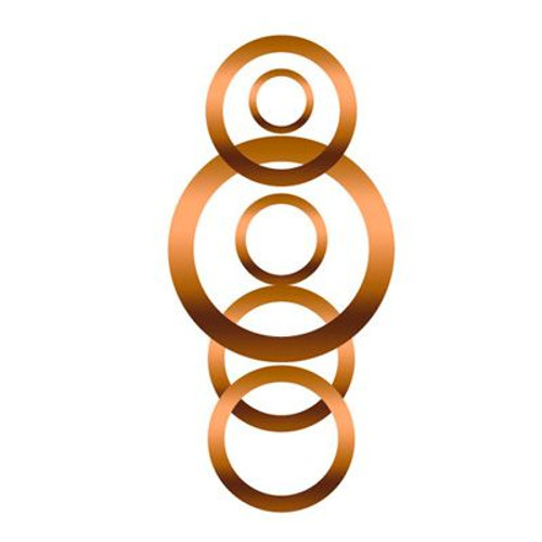 Goodridge Copper Crush Washer