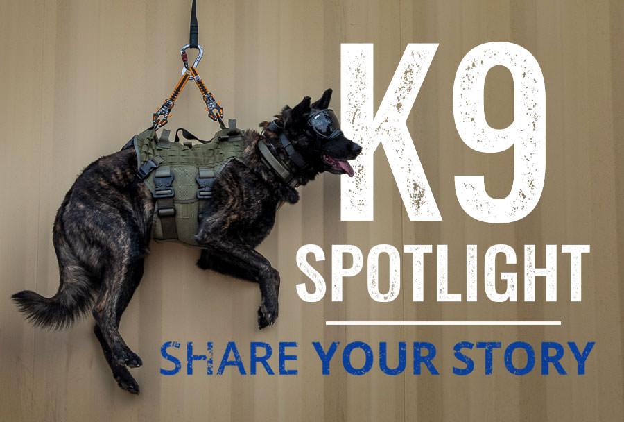 K9 Spotlight