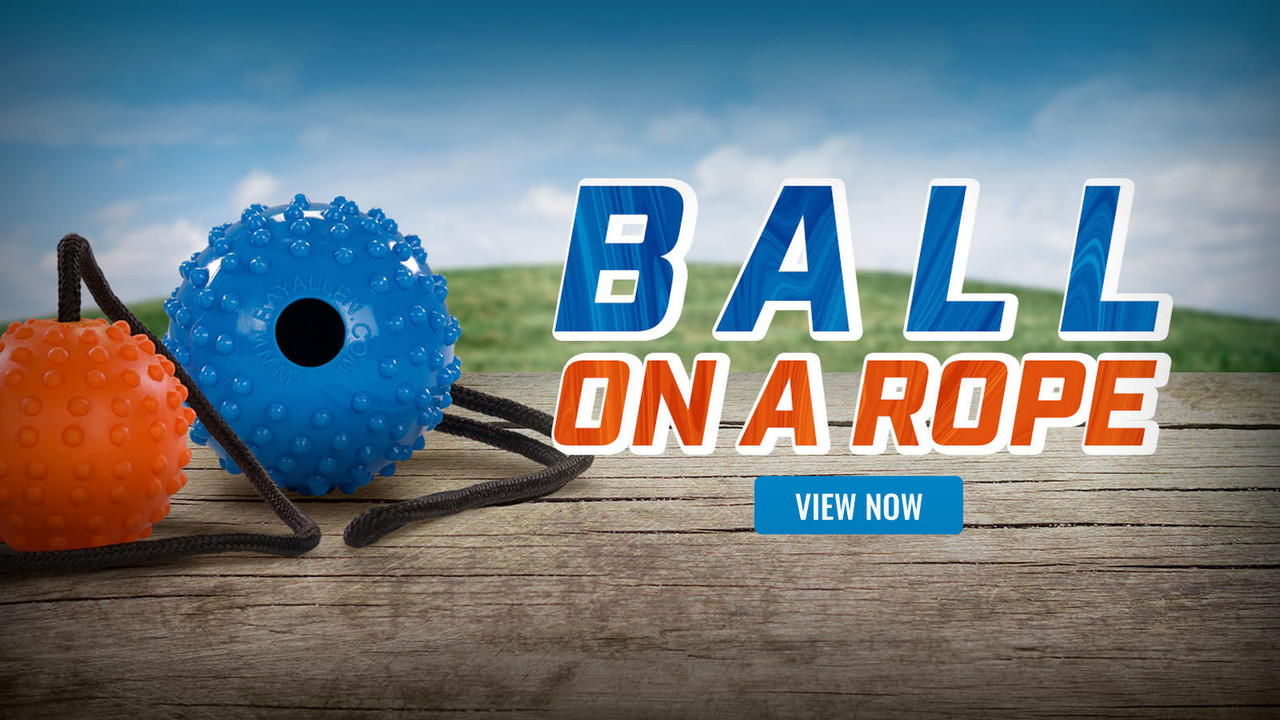 Ray Allen Ball-On-Rope Tug Toy For Dogs