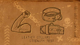 Leather Dog Collars Strength Test - Backwoods Destructive Testing