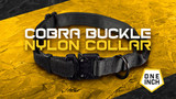 1-Inch Nylon Cobra Buckle Dog Collar- Best Everyday Wear Dog Collar