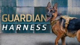 Guardian Lightweight Tracking Dog Harness