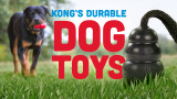 A New Look At The Classic KONG™ Toy For Dogs