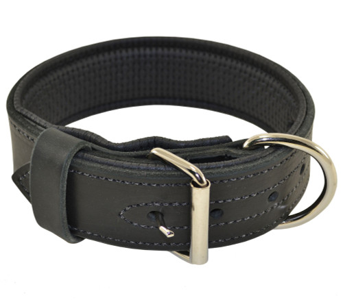 Ultimate Padded Leather Collar
